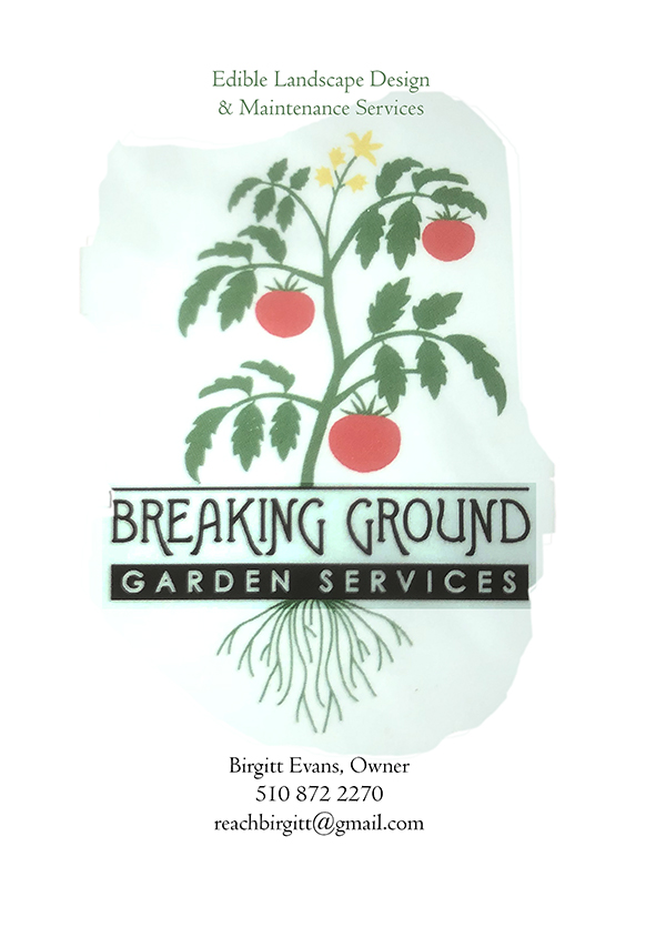 breakingGROUND